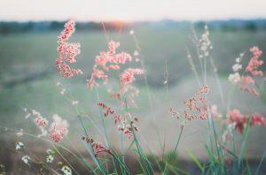 photo-by-kien-do-unsplash